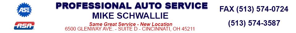 Professional Auto Service